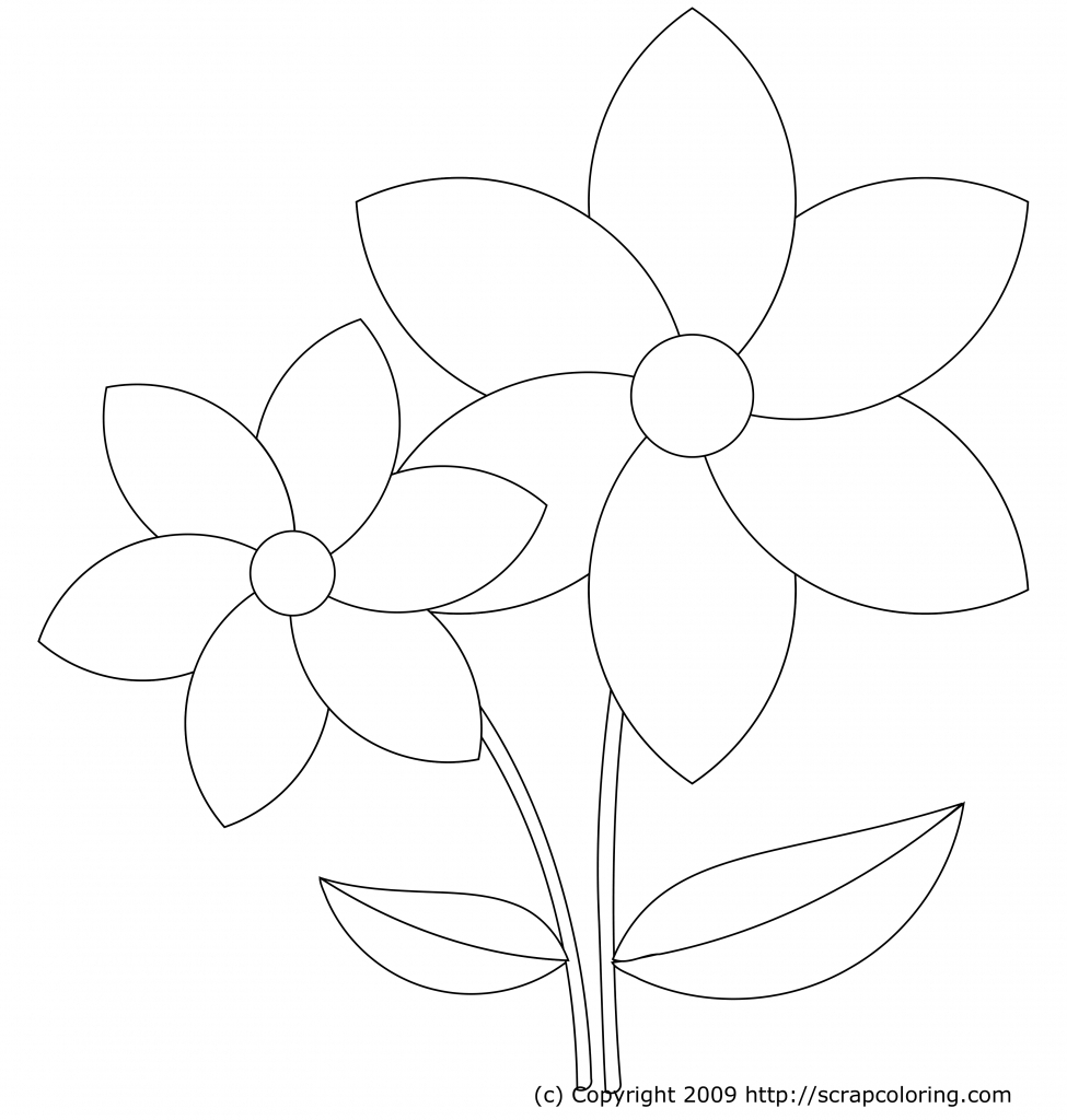 975x1024 How To Make Beautiful Flowers Drawing Flower Drawing Design Make