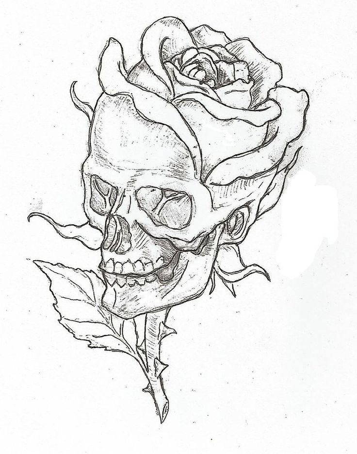 736x935 Coloring Pages Easy Flowers To Sketch Skull Drawings Rose