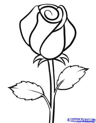 331x421 drawn sketch rose flower