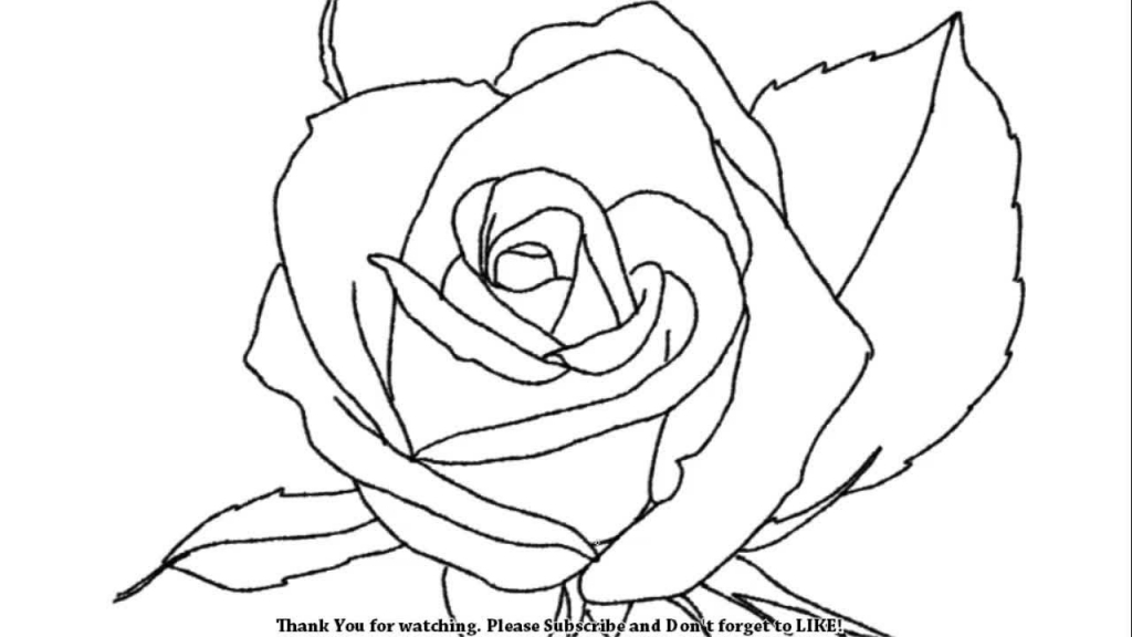 1024x576 Easy Rose Drawings How To Draw A Beautiful Rose Youtube
