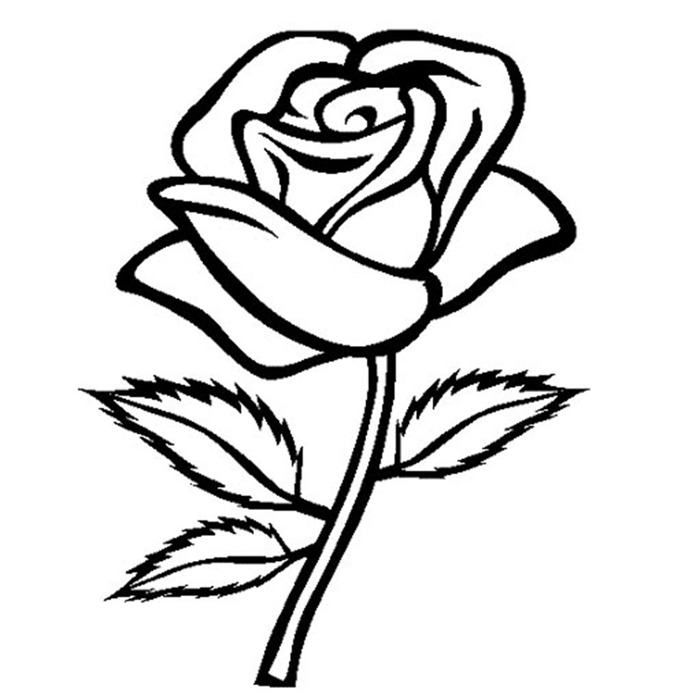 The Best Free Rose Drawing Images Download From 50 Drawings Of Flower Line Diagram Simple Bud Stock Vector 982x999 Easy To Draw For Kids