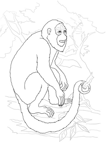 360x480 Howler Monkey Coloring Page Free Printable Coloring Pages