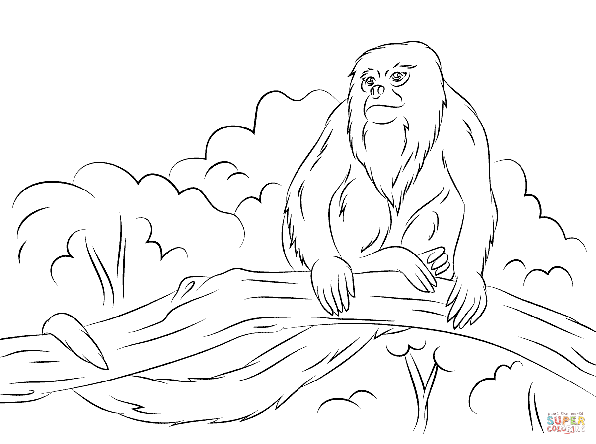 1200x895 Howler Monkey Sitting Tree Coloring Pages Coloring For Kids