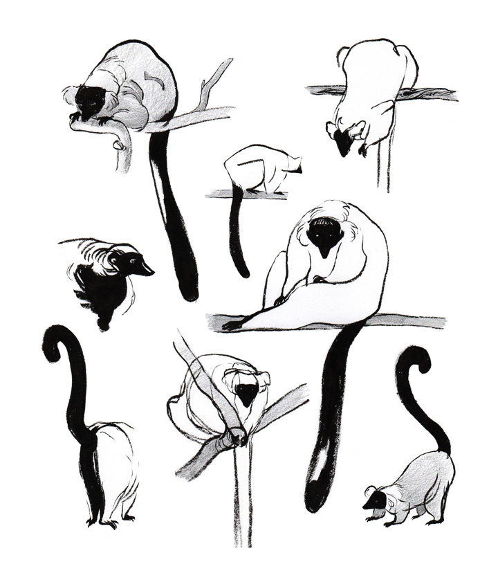 720x828 Tiffany Prothero Sketchblog