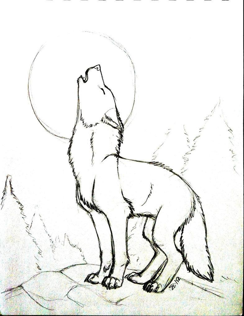 786x1017 Coyote Howling