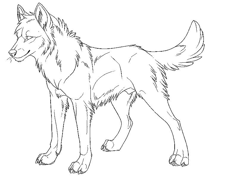 800x600 Drawn Howling Wolf Traceable