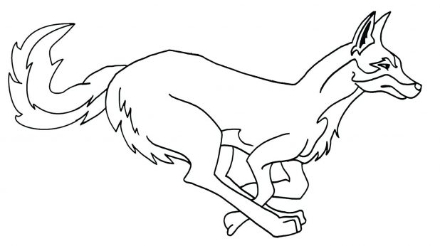 618x346 Coloring Pages Astonishing Coyote Coloring Page. Realistic Coyote