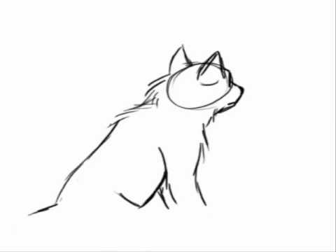 480x360 Drawn Howling Wolf Animation