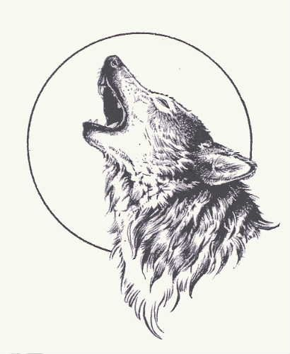 410x500 Grey Wolf And Moon