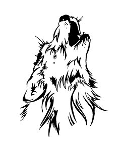 242x300 Howling Wolf Drawings