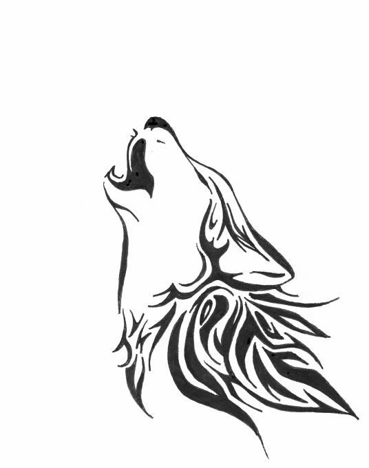 536x680 Wolf Tattoo On Wolf Drawings Celtic Wolf Tattoo