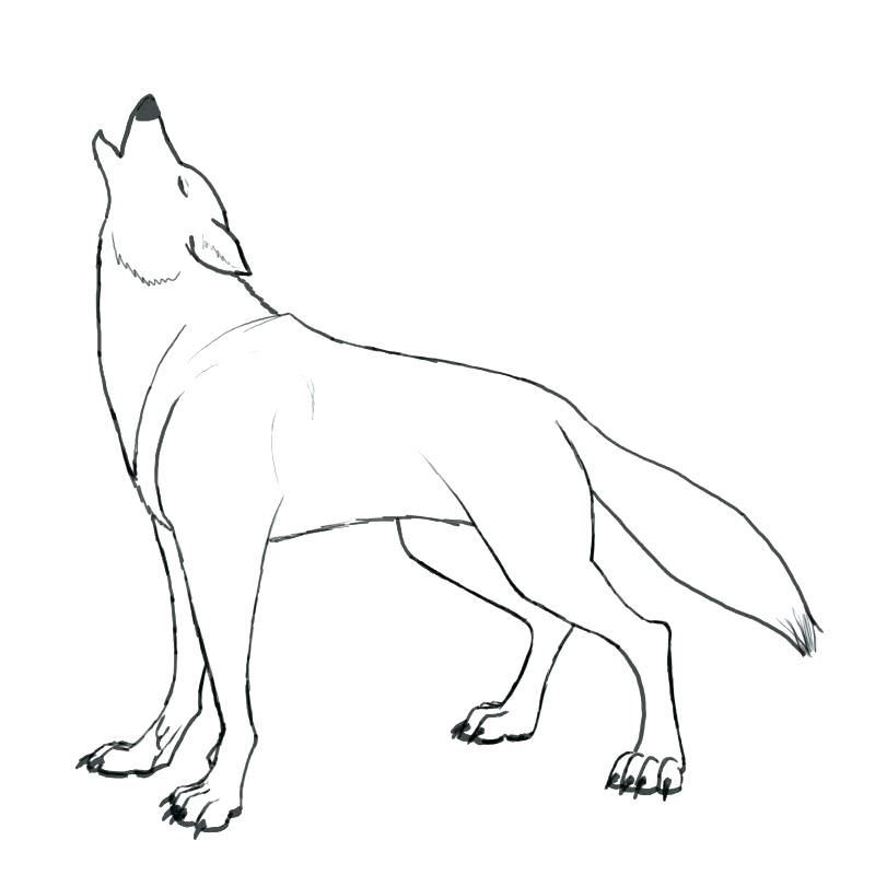 800x800 Coloring Pages Of Wolfs Howling Wolf Coloring Pages Coloring Page