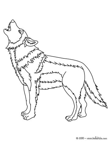 364x470 Wolf Drawing For Kids, Coloring Pages, Reading Amp Learning, Free