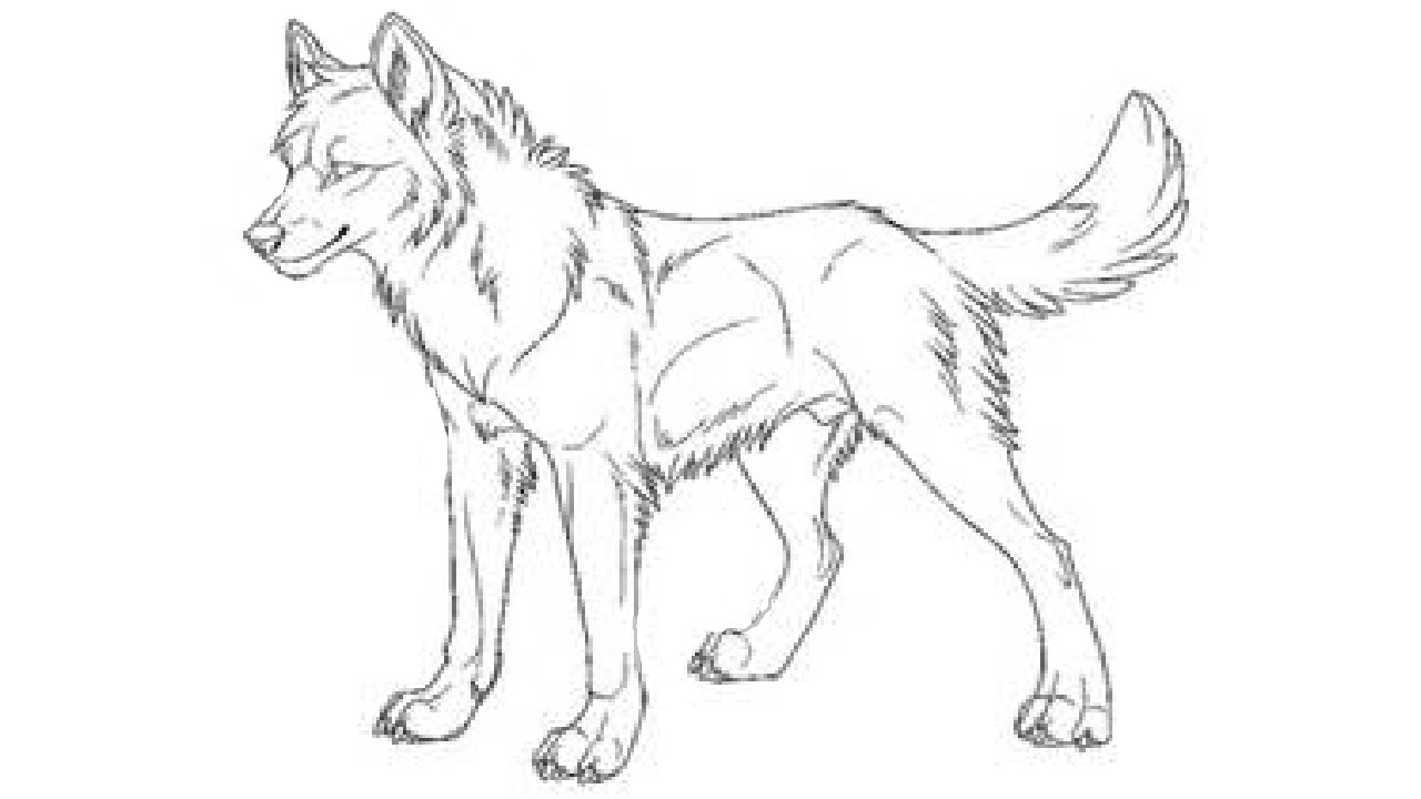 1280x720 Wolf Drawing