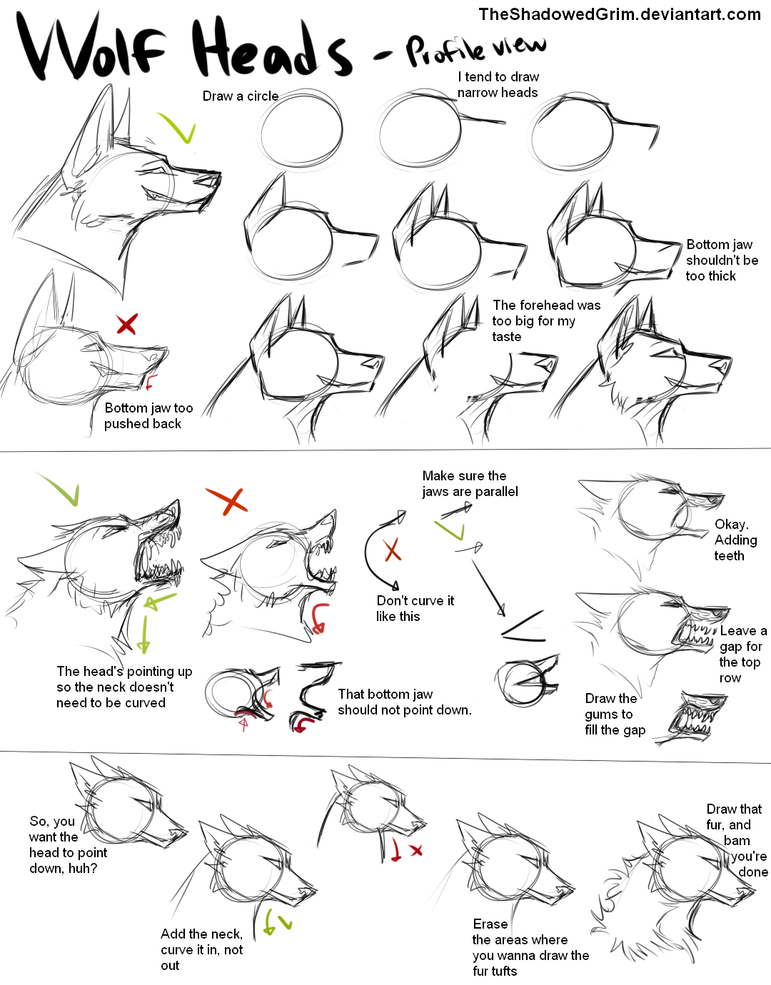 1080x1380 How I Draw Wolvescanines By Theshadowedgrim
