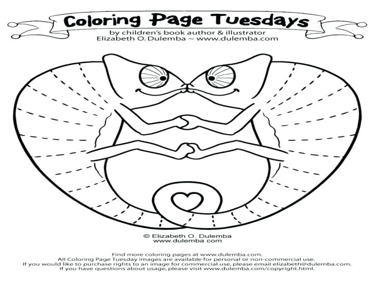 728x546 Mixed Up Chameleon Coloring Page Drawing Chameleon Coloring Pages