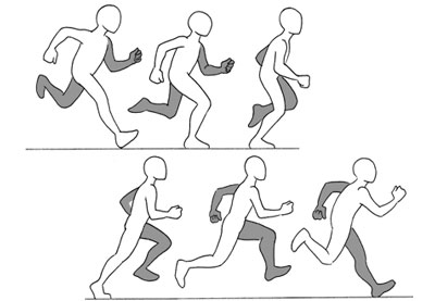 400x277 Human Anatomy Fundamentals Additional Tips