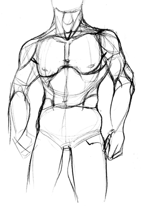 Human Anatomy Drawing At Getdrawings Free For Personal Use