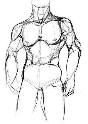 300x424 Draw Human Anatomy Yi's Blog