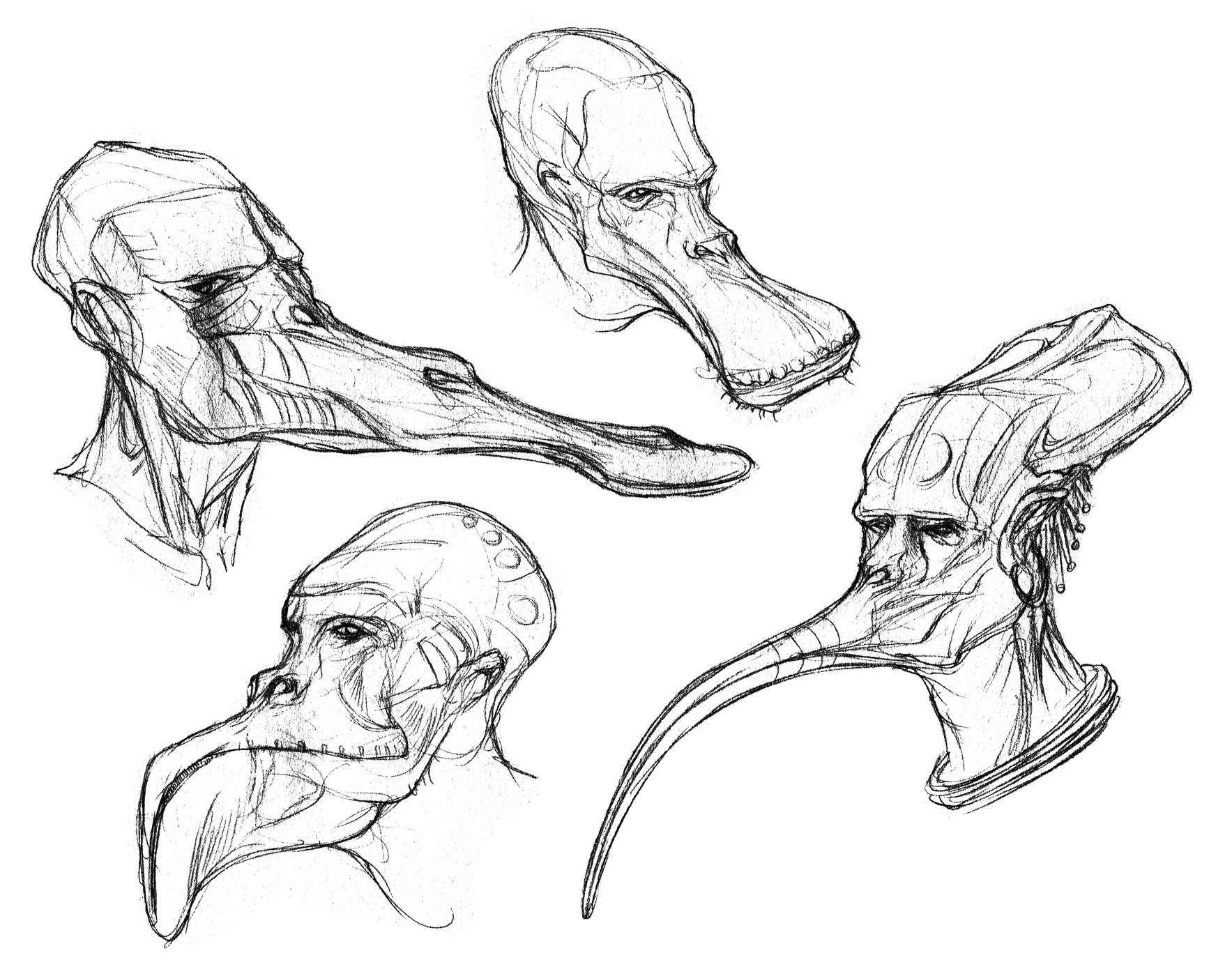 1767x1400 Anthravignathid Sketches By Thomastapir