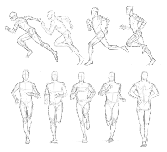 540x490 And Human Proportions Tumblr