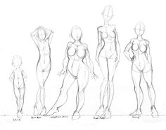 236x185 Drawing The Human Figure Drawing In Photoshop Via