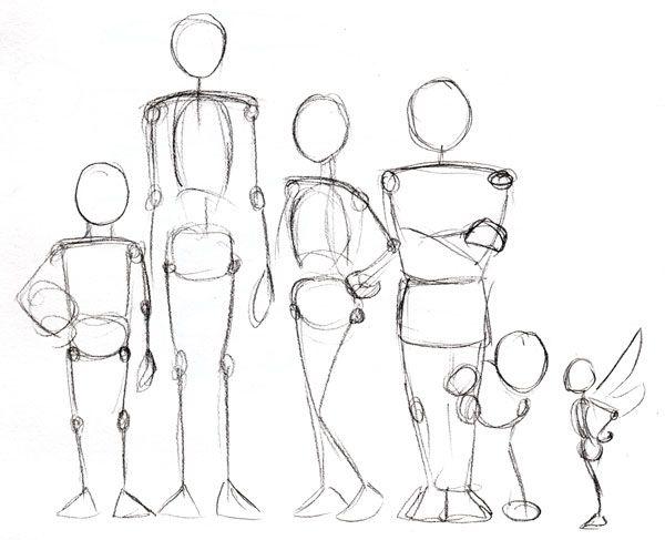 600x487 Human Anatomy Fundamentals Advanced Body Proportions Body