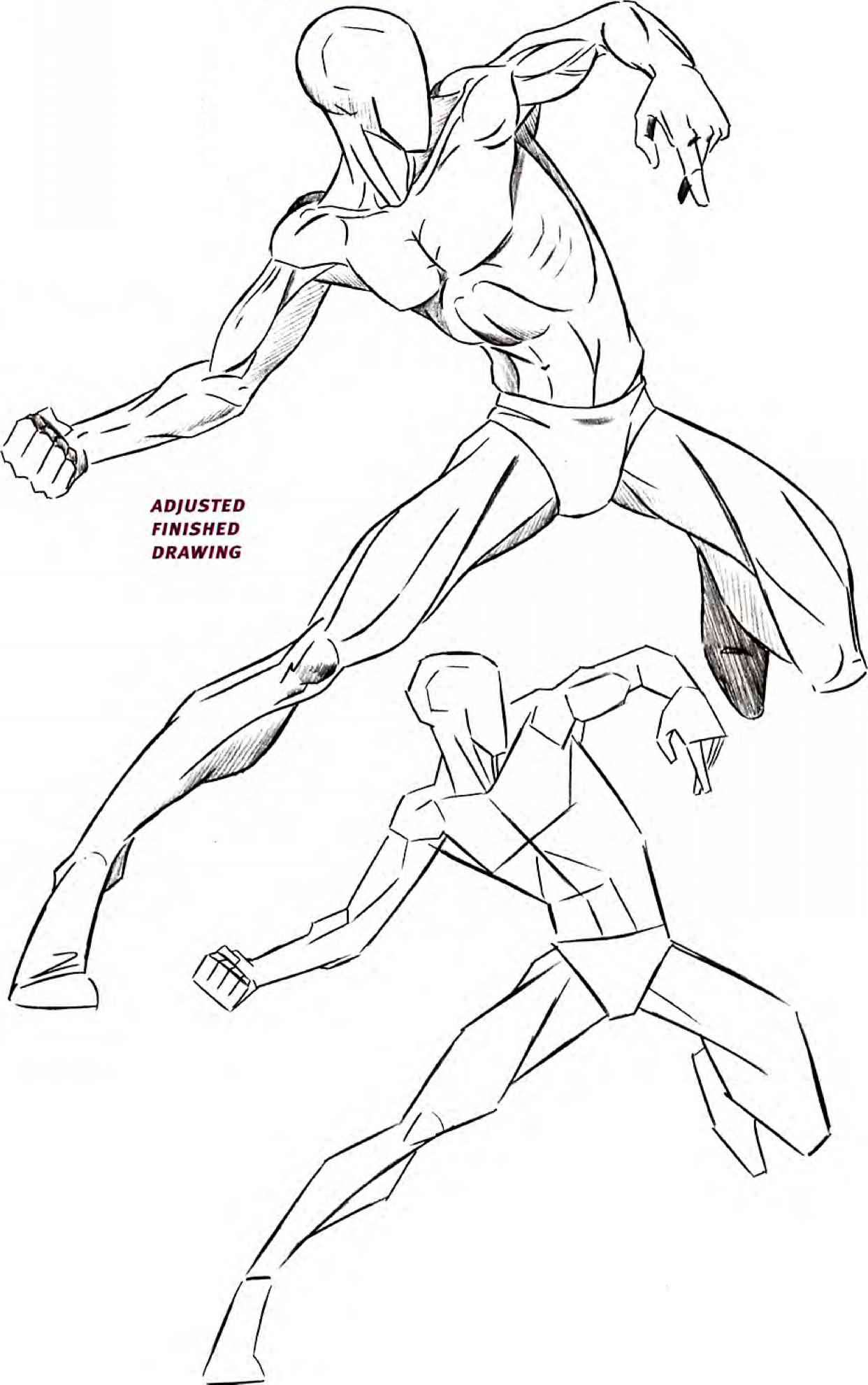 Human Body Anatomy Drawing at GetDrawings.com | Free for personal ...