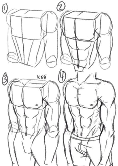 500x700 771 Best Tutorials Drawing Images On Drawing, Anatomy