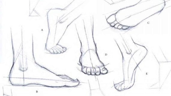 570x320 Pencil Sketches Of Human Synthesizing The Foot