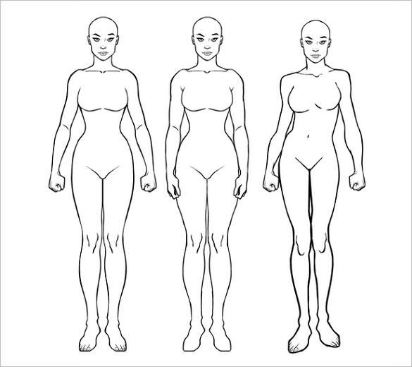 585x520 Body Outline Template Free Sample, Example, Format Download
