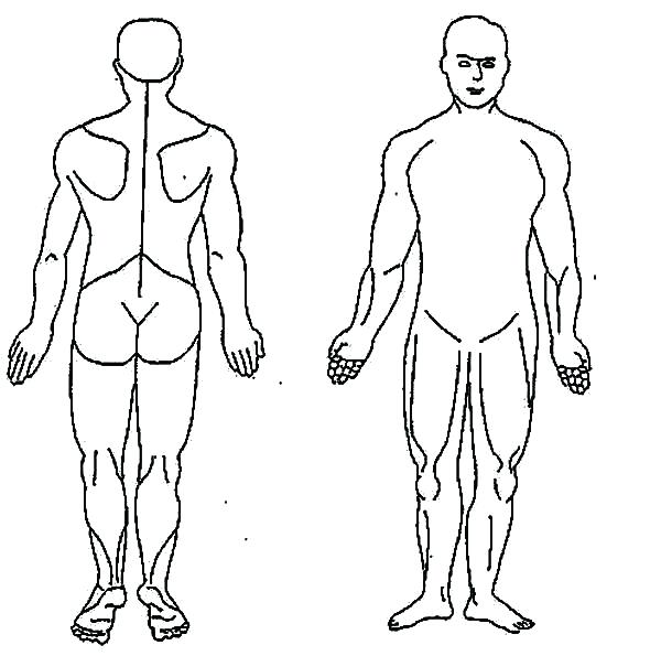 600x595 Body Outline Coloring Page Body Outline Coloring Page Human Body