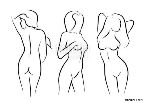 500x357 Vector Illustrations Vector Women Naked Human Beauty Body Drawing