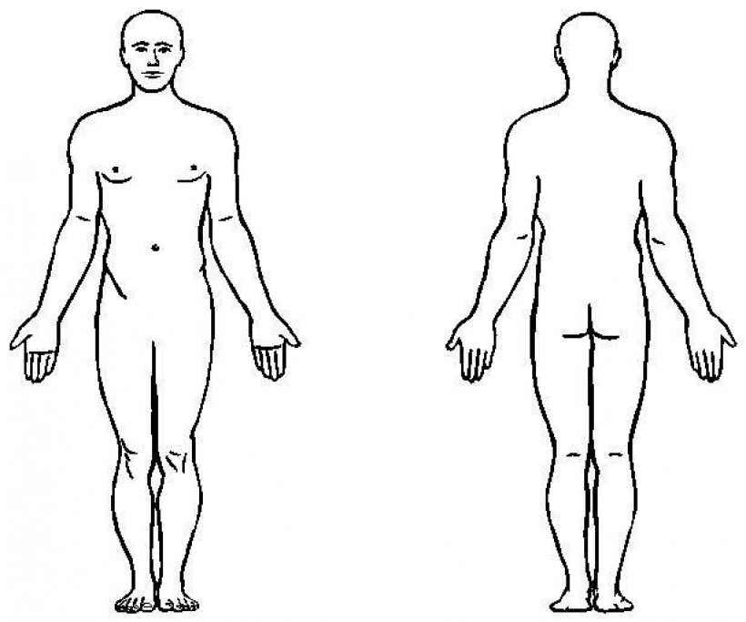 820x683 Body Clipart Outline