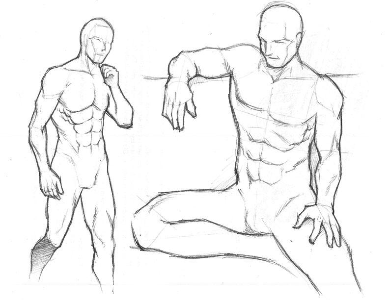 792x612 Gallery Human Body Drawing,
