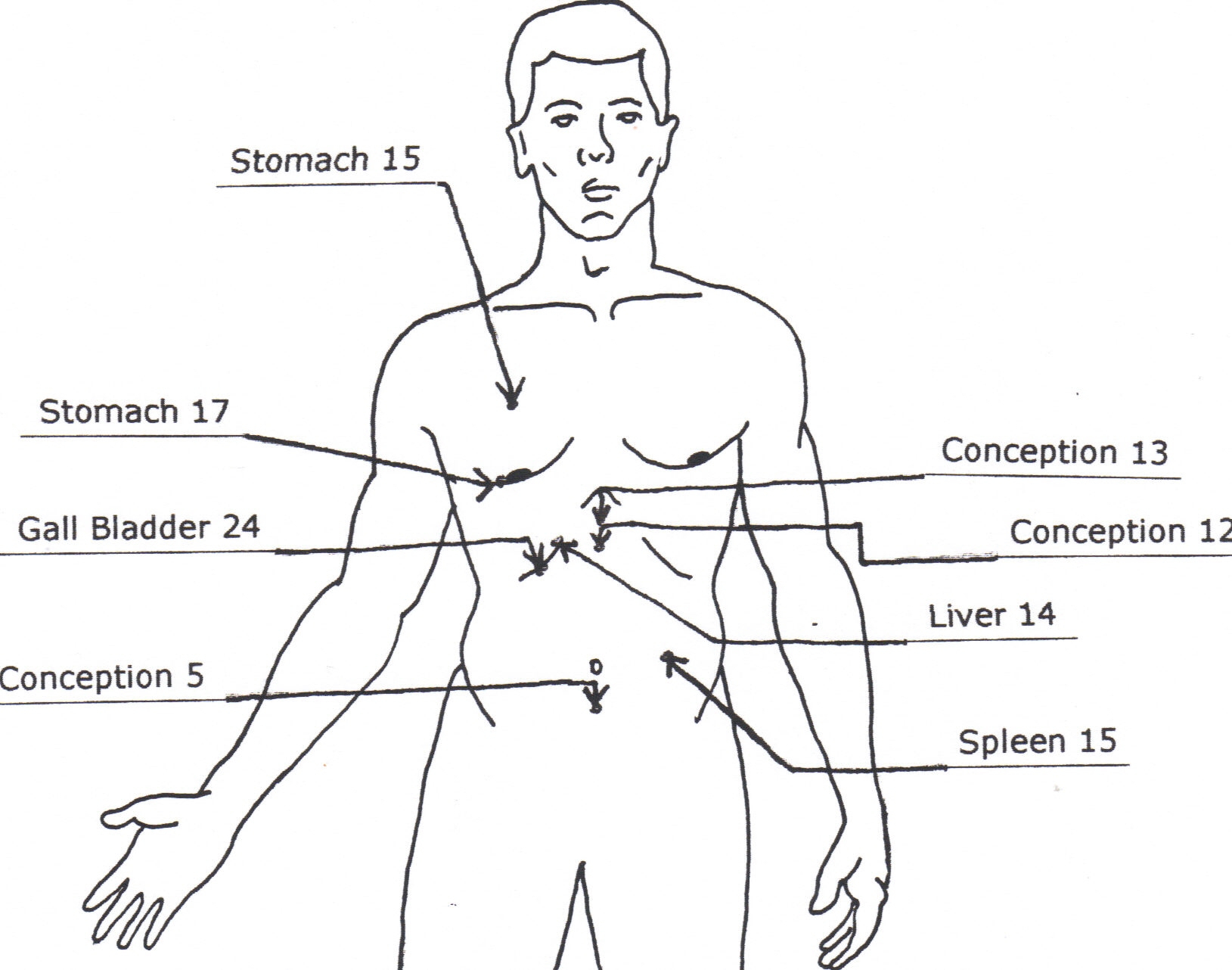 1629x1282 Human Body Weak Points Human Body Structure With Weak Point Human