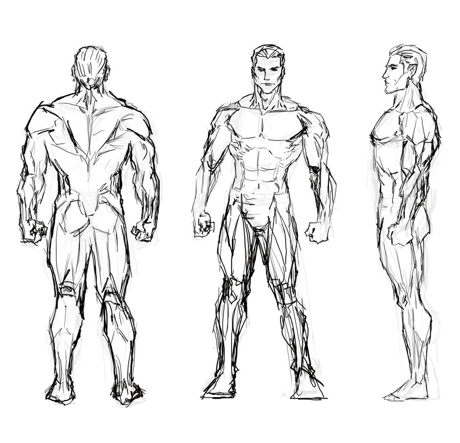 900x867 Male Study Sketch By Masterss