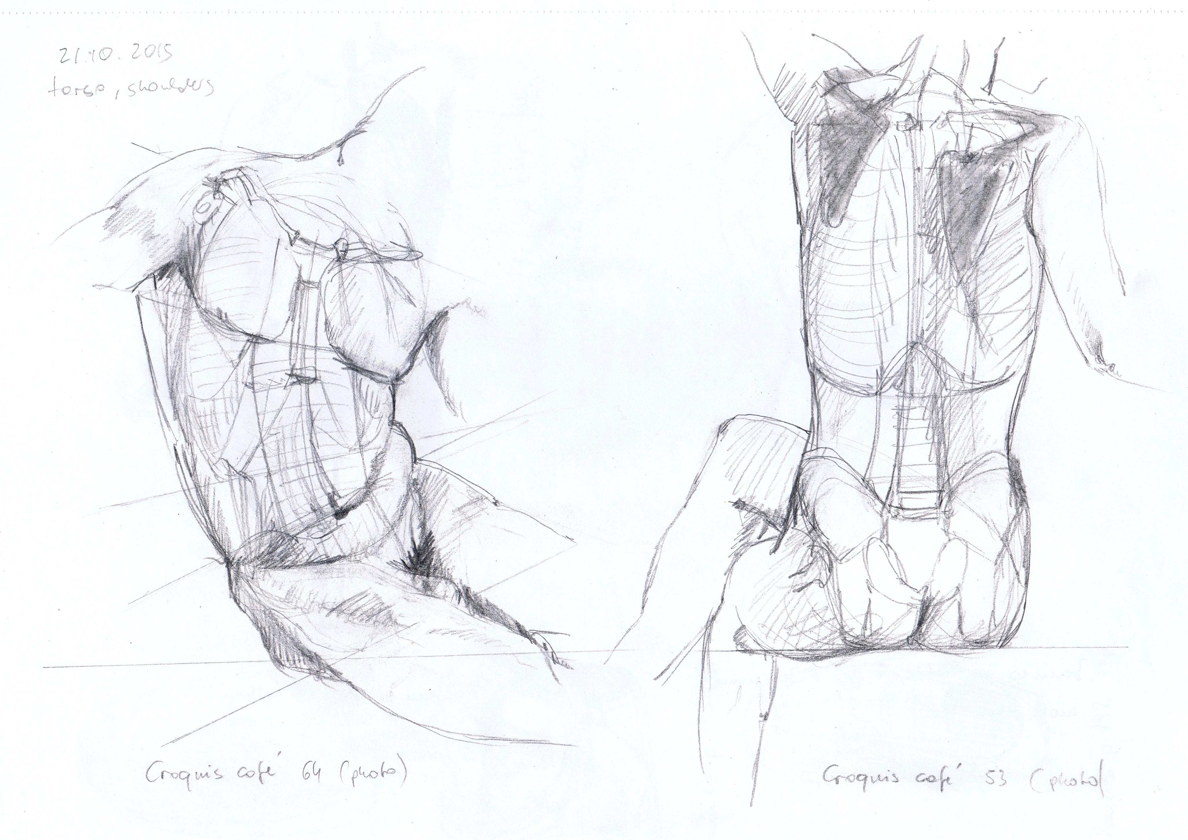 4102x2902 Human Body Andrea's Oca Study Blog