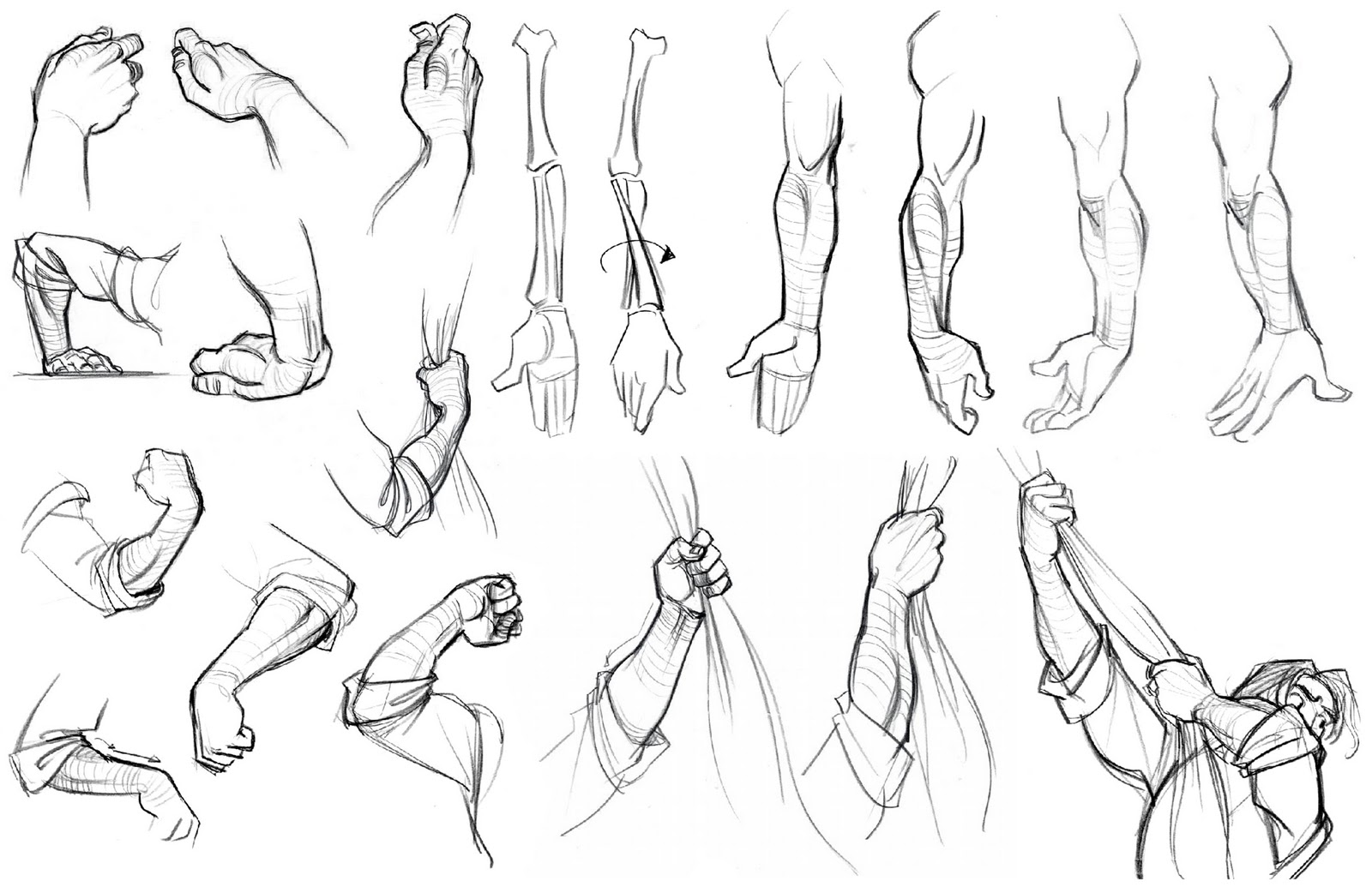 Human Body Structure Drawing at GetDrawings.com | Free for personal ...