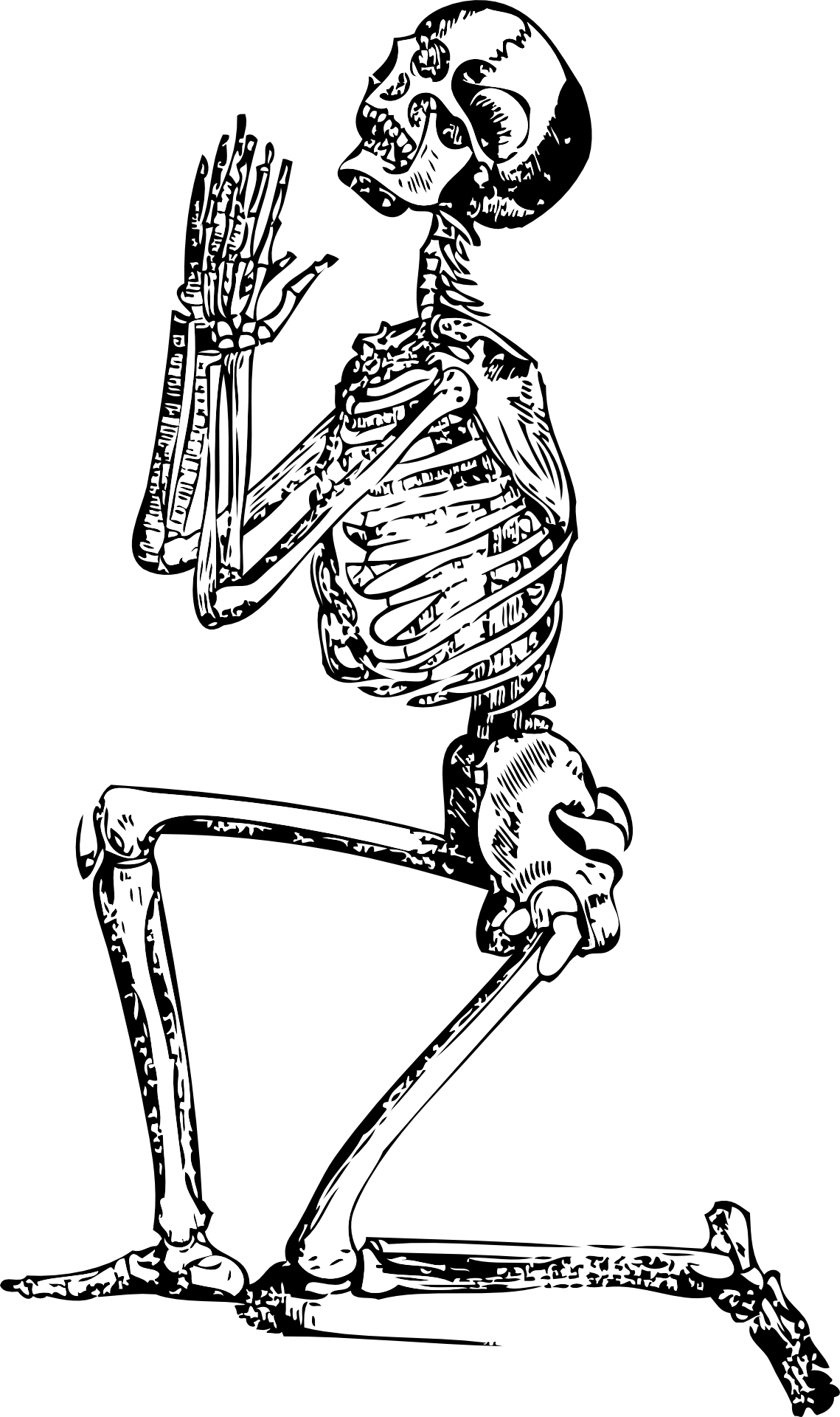1139x1920 Hand Drawing,human Skeleton,prayer Amp Supplication Vector Free