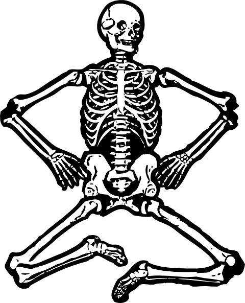 480x593 Human Skeleton Clip Art Free Vector In Open Office Drawing Svg