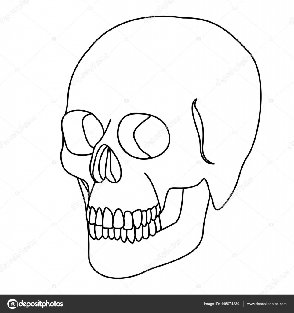 963x1024 Silhouette Skeleton Of The Human Skull Icon Stock Vector