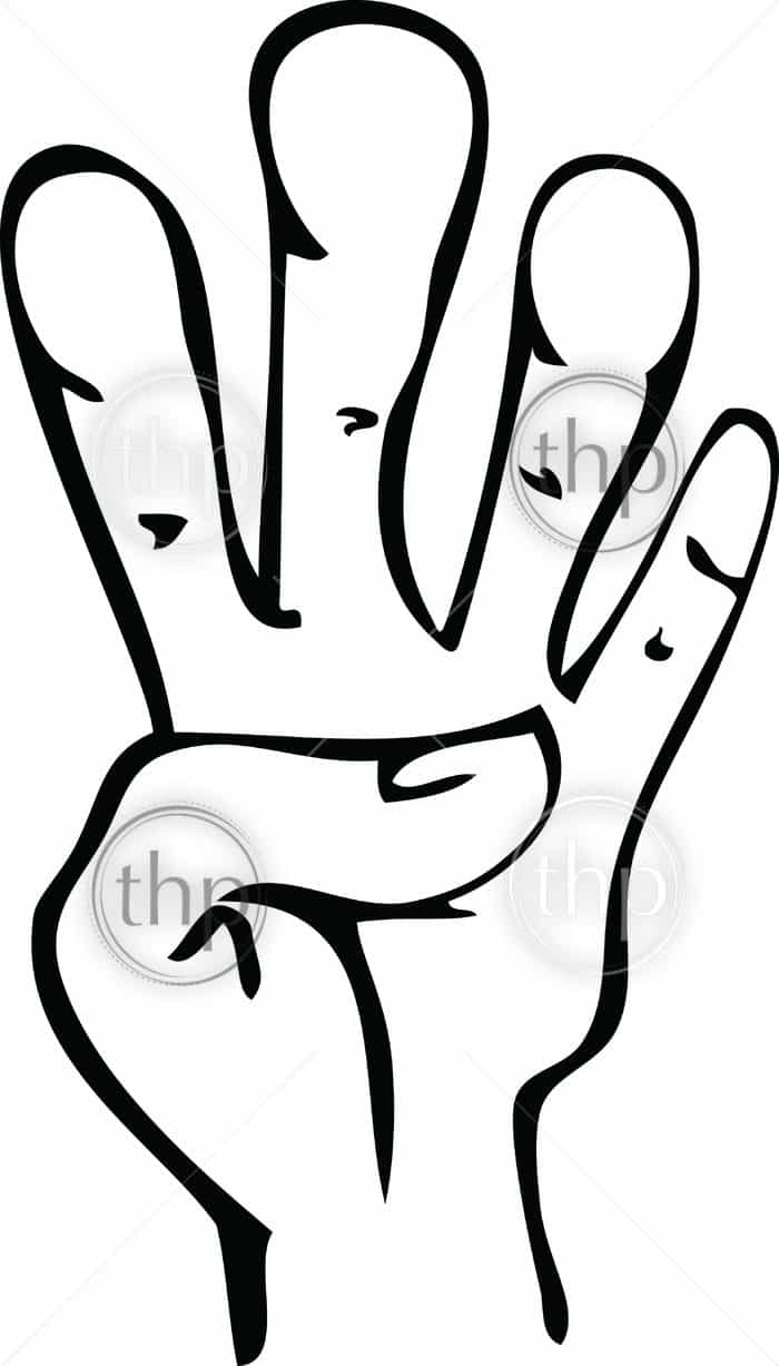 700x1227 Cartoon Line Drawing Of Human Hand Showing 4 Photo