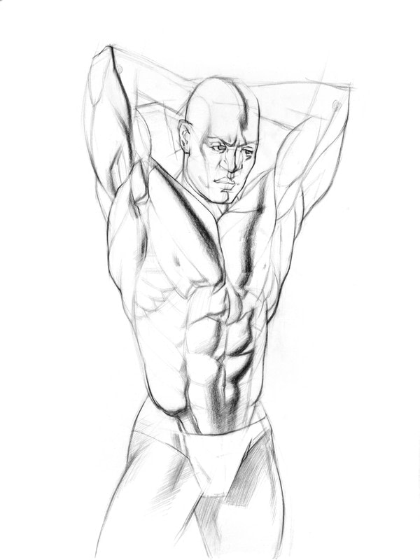 600x800 How To Draw And Shade The Human Torso How To Make A Drawing