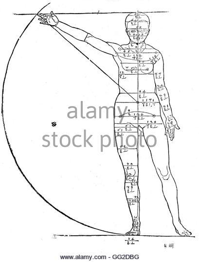409x540 Albrecht Hand Human Body Proportions Scheme Sketch Stock Photos