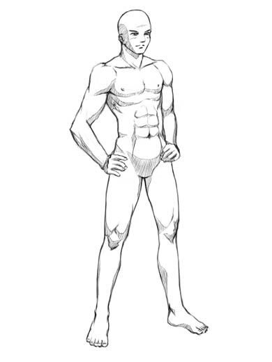390x520 Human Body Sketches Finally, You Might Want To Shade