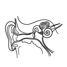 230x230 Human Ear Coloring Sheet Page For Kids