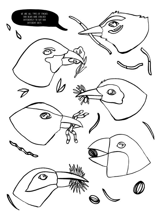 600x818 Human Evolution Coloring Book Best The Human Evolution Coloring