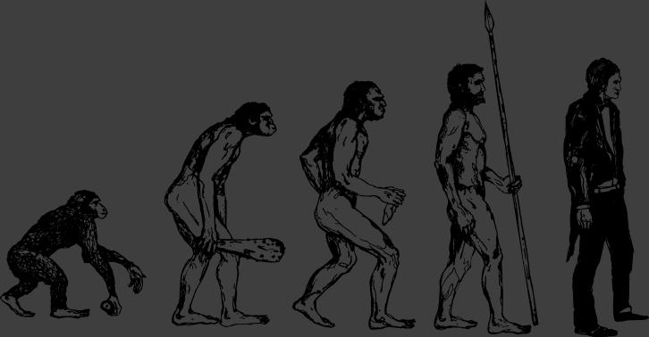 726x378 Human Evolution Wall Sticker