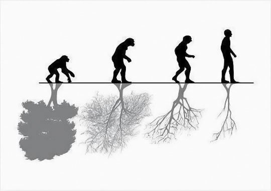 540x381 Human Evolution Vs. Nature Human Evolution Human
